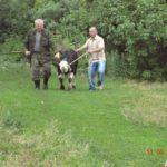 Вручение коровы и бычка семье Парушенко Н.И. и Дедюхиной В.А.