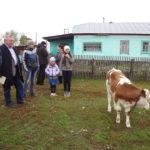 Акция «Корову – в подарок многодетной семье» продолжается